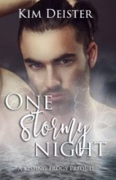 One Stormy Night Cover Reveal