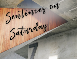 Seven Sentences on Saturday: Last Call